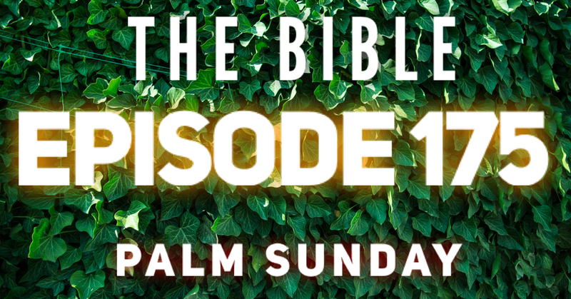 Episode image for How To Read Through The Bible