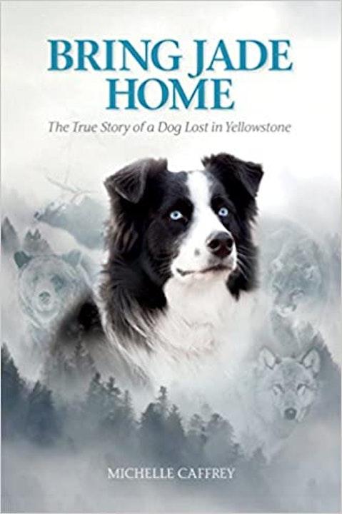 Bring Jade Home Image