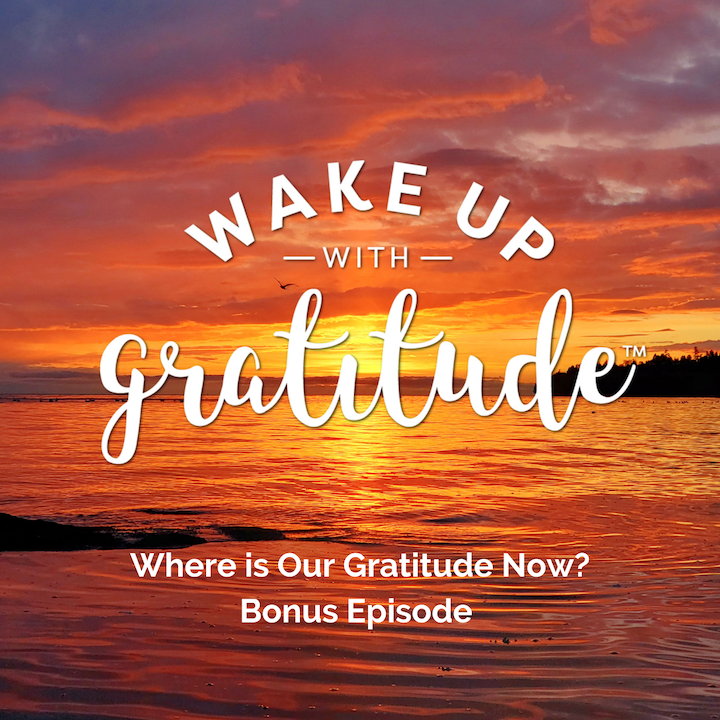 Where is Our Gratitude Now? Bonus Episode in Response to Protests Outside of Canadian Hospitals