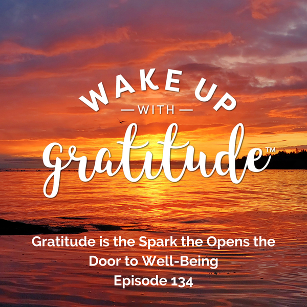 #134 - Gratitude is the Spark the Opens the Door to Well-Being