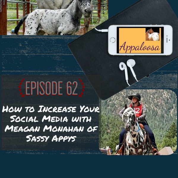 How to Increase Your Social Media with Meagan Monahan of Sassy Appys Image
