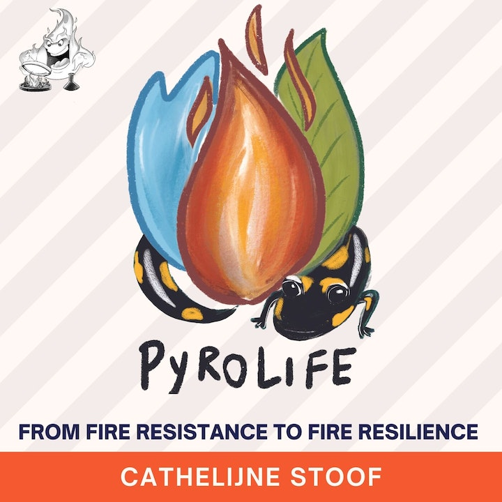 017 - Pyrolife - from fire resistance to fire resilience with Cathelijne Stoof