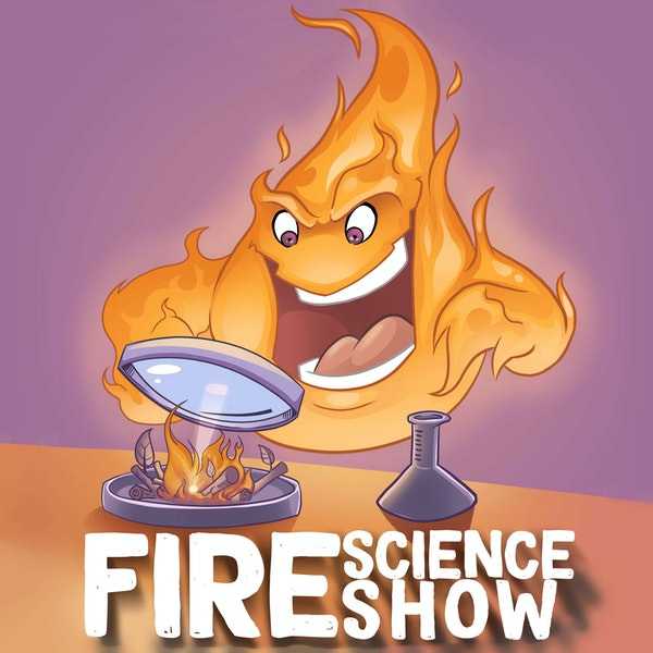 013 - On the use and abuse of CFD in fire engineering with Wolfram Jahn