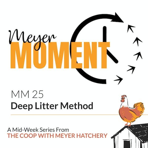 Meyer Moment: Deep Litter Method Image