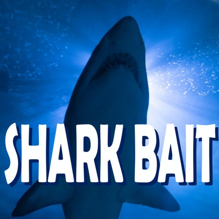SHARK BAIT Image