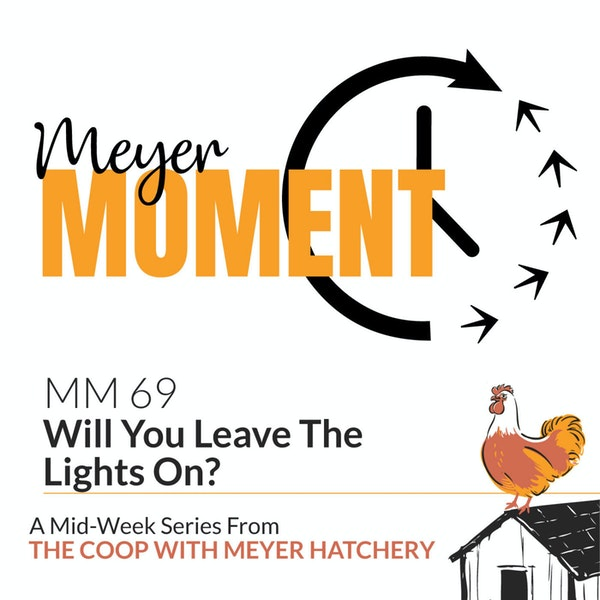 Meyer Moment: Will You Leave The Lights On? Image