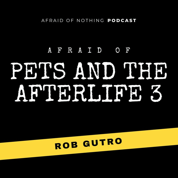 Afraid of Pets and the Afterlife 3