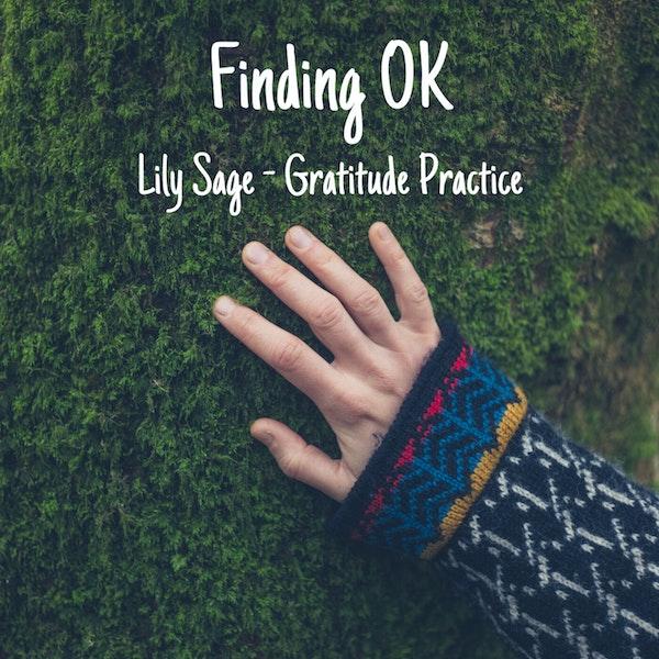 Lily Sage - Gratitude Practice Image