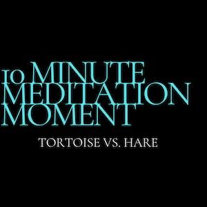 10 Minute Meditation Moment - Tortoise Vs. Hare