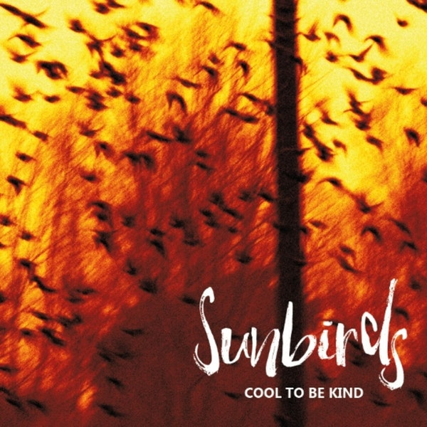 Sunbirds - The Dave Hemingway and Phil Barton Interview Image