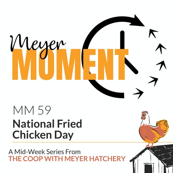 Meyer Moment: National Fried Chicken Day Image