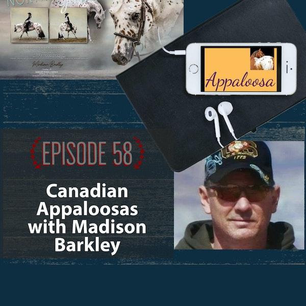 Canadian Appaloosas with Madison Barkley Image