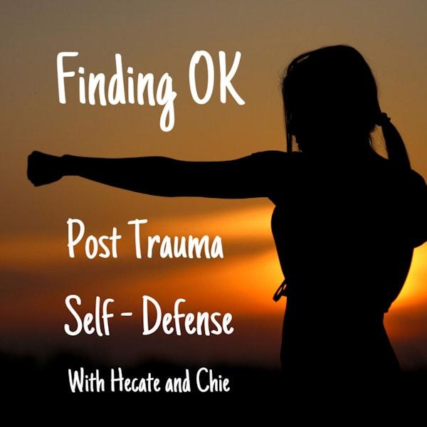 Post Trauma Self - Defense Image