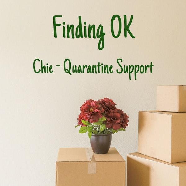 Chie - Quarantine Support Image