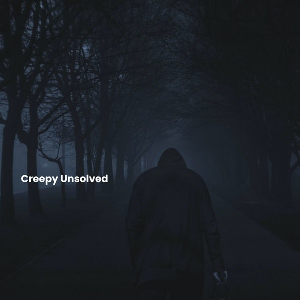 13: Scary Stories UFOs/Aliens/Glitches in the Matrix Image