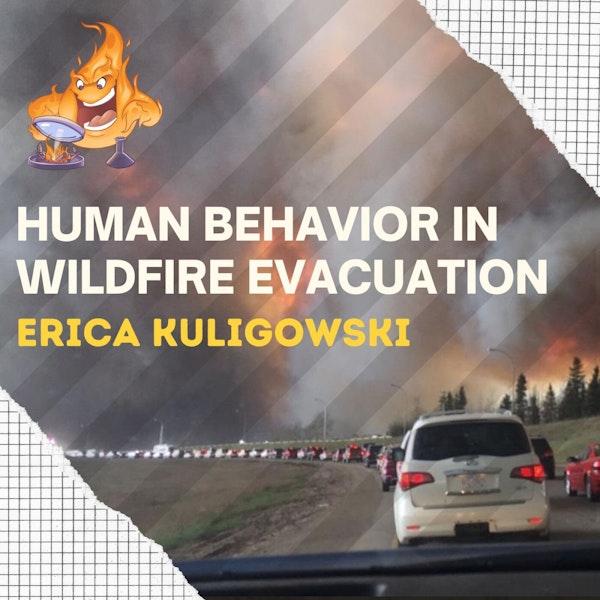 019 - Modelling human behaviour in wildfire evacuation with Erica Kuligowski