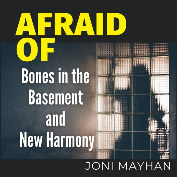 Afraid of Bones in the Basement and New Harmony Image