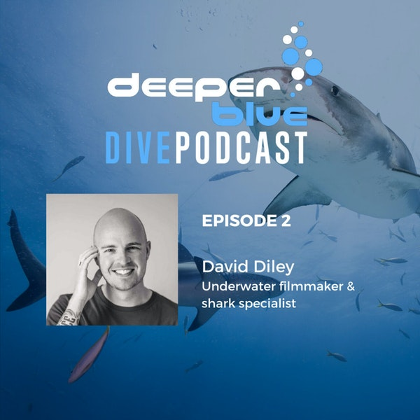 The Day Diving Stood Still, and Underwater Cameraman David Diley Image
