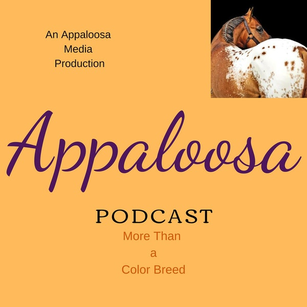 EP16 - Destiny Zeiders of the Appaloosa Game Horse Association Image