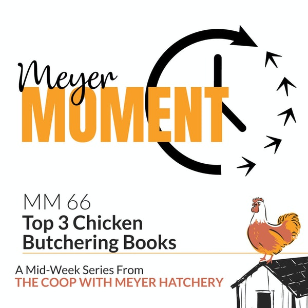 Meyer Moment: Top 3 Chicken Butchering Books Image