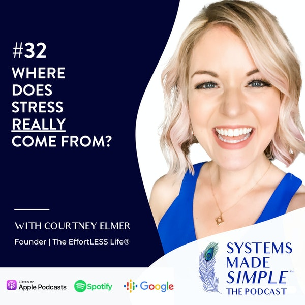 Where Does Stress REALLY Come From? Image