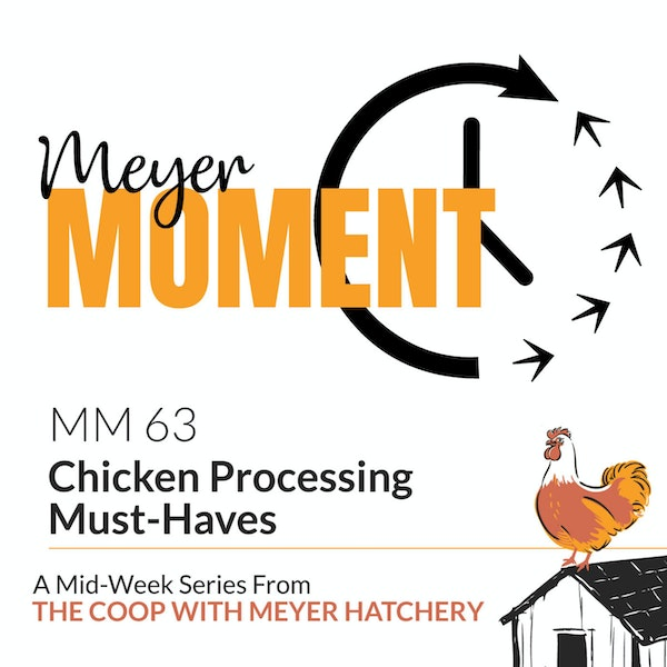 Meyer Moment: Chicken Processing Must-Haves Image