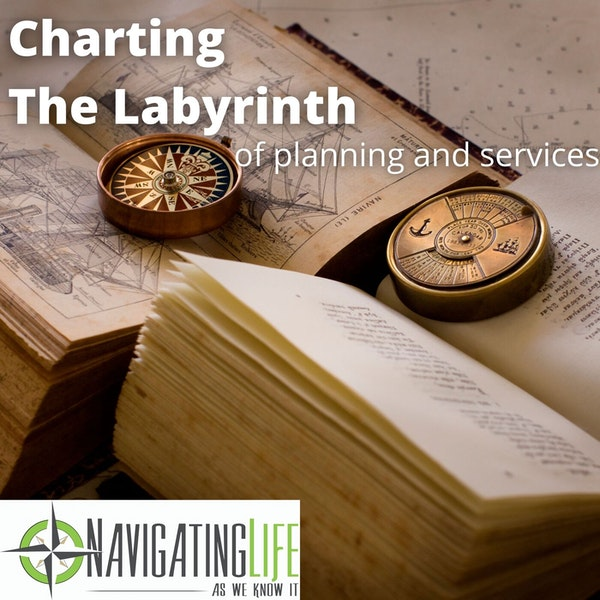36. Charting The Labyrinth of Planning and Services