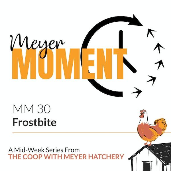 Meyer Moment: Frostbite Image