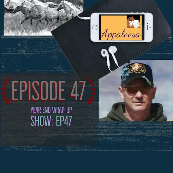 Year End Wrap-up Show: EP47 Image
