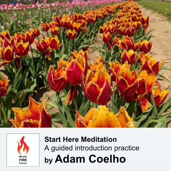 27 : Start Here Meditation - A guided introduction practice (15 mins)