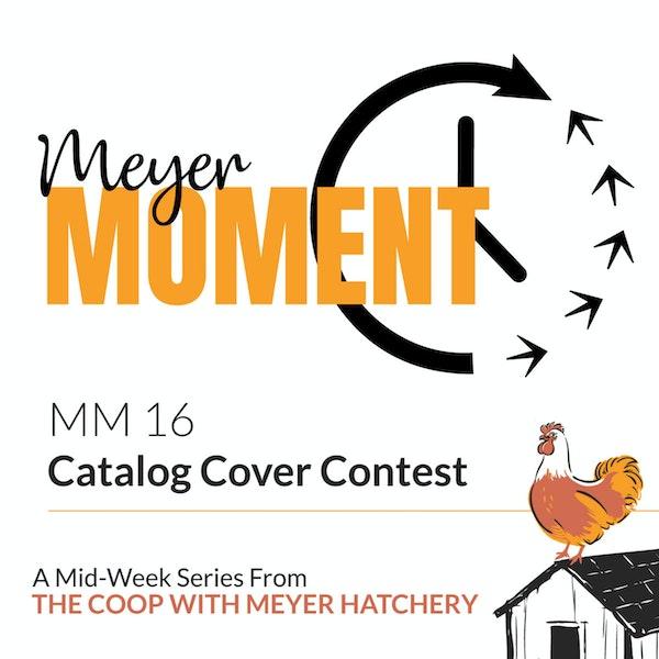 Meyer Moment: Meyer Hatchery Catalog Cover Contest Image