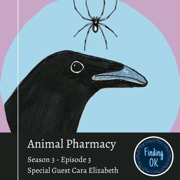 Animal Pharmacy Image