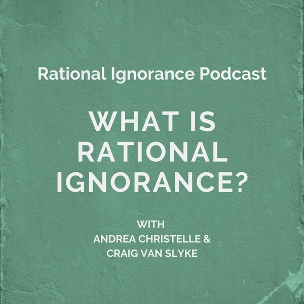 What is rational ignorance?