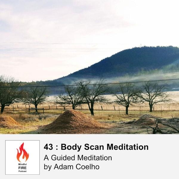 43 : Body Scan Meditation Image