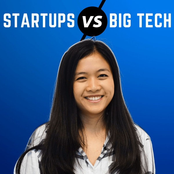 Startups vs Big Tech Company as a Software Engineer (Interview Process and Career Growth) Image