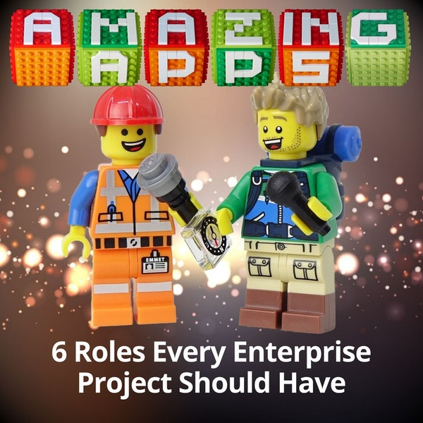 6 Roles Every Enterprise Business Applications Project Should Have