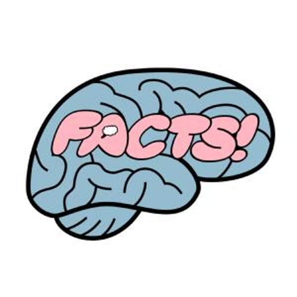 Your Brain on Facts ( Take Two)