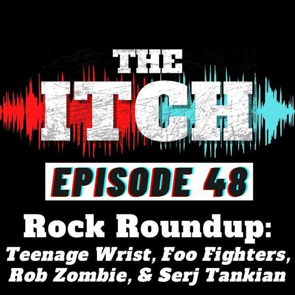 E48 Rock Roundup: Teenage Wrist, Foo Fighters, Rob Zombie, & Serj Tankian