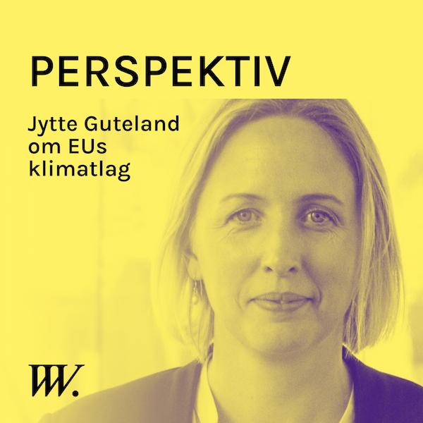 57. EUs ambitiösa nya klimatlag - med Jytte Guteland Image