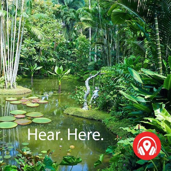 259569 Singapore Botanic Garden - BB Theta Image