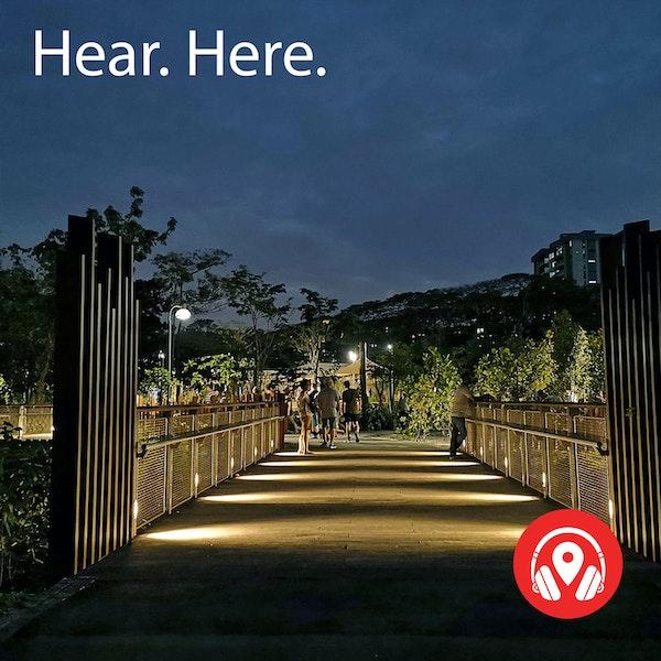 618641 Jurong Lake Garden Night - BB Delta Image