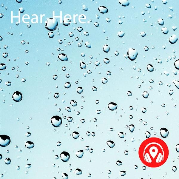 628926 Jurong Hill Light Rain - BB Alpha Image