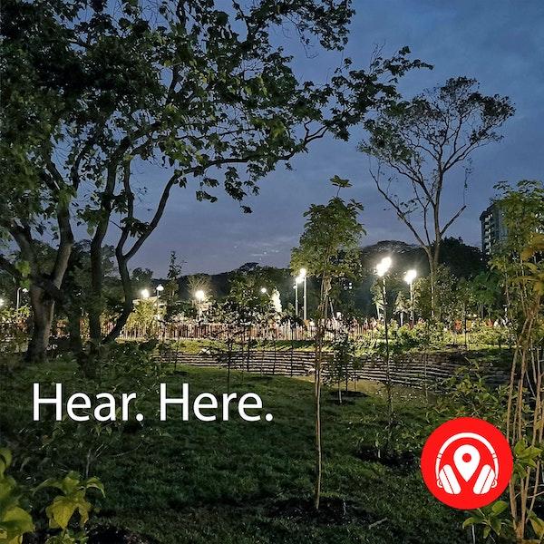 618641 Jurong Lake Garden Night - BB Alpha Image