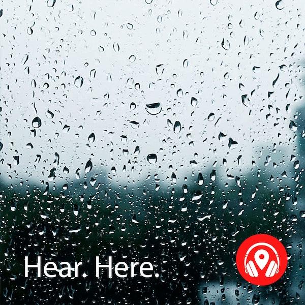 628926 Jurong Hill Light Rain - BB Theta Image
