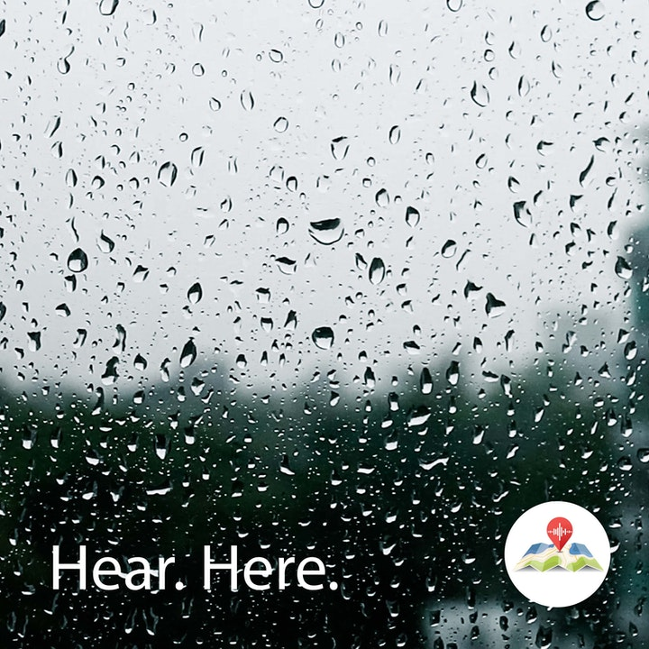 628926 Jurong Hill Light Rain - BB Theta