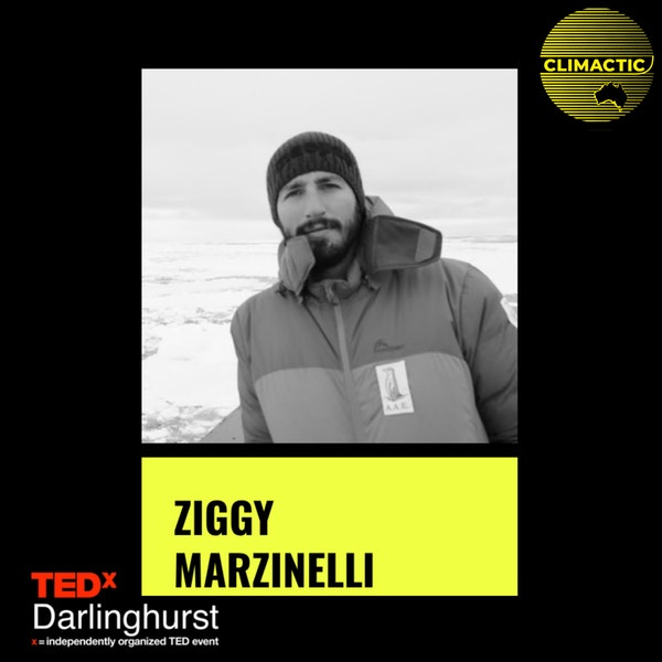 Ziggy Marzinelli | Restoring is not enough - future-proofing our marine ecosystems Image