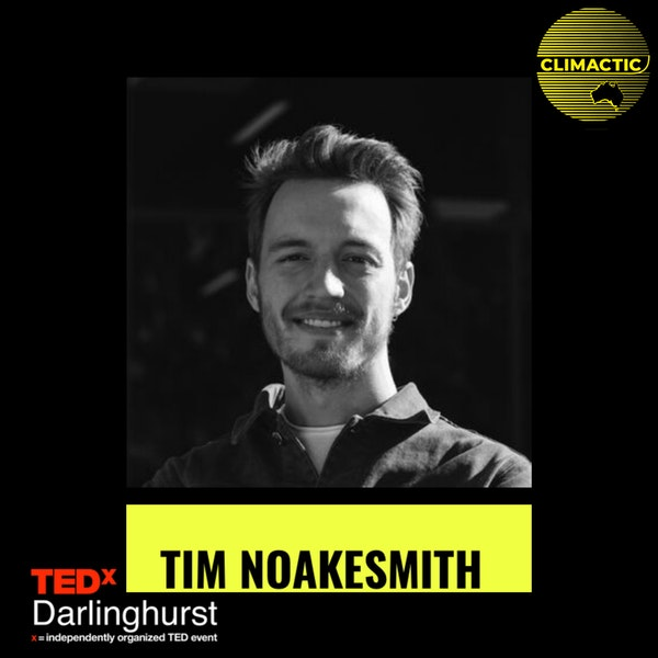 Tim Noakesmith | Why eating Tortoise could save the planet Image