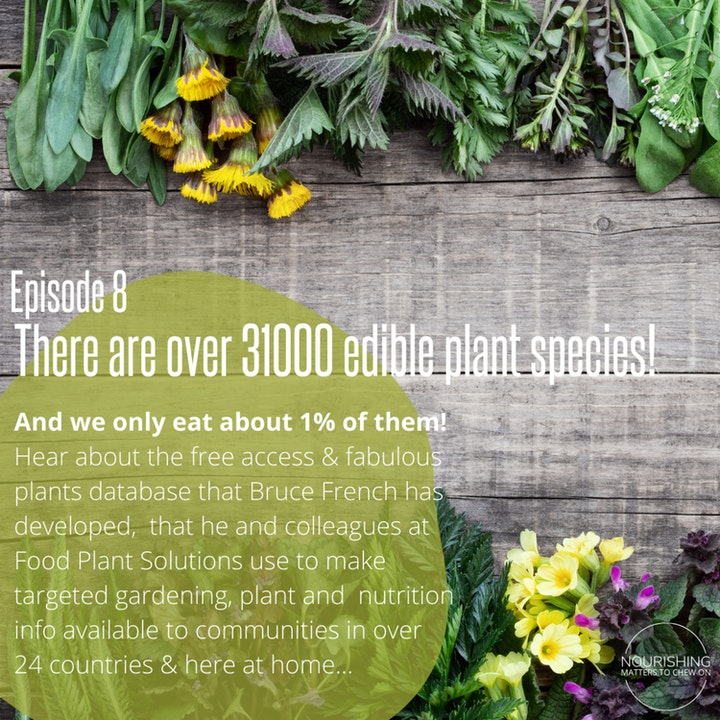 "Dr John McPhee and OA Karalyn Hingston ""Food Plant Solutions"""