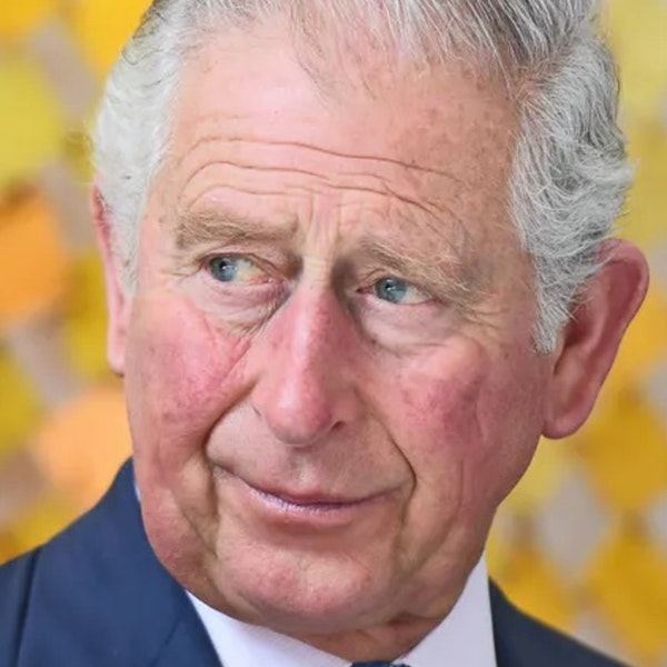 Quick Climate Links: Prince Charles urges Scott Morrison to join other world leaders at 'last chance saloon' Image