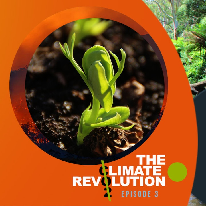Sustainable Hour | The Climate Revolution - Part 3